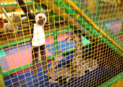 MonkeyMates-Softplay-Berkshire_0015
